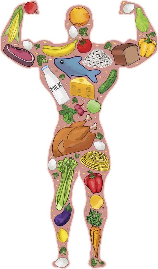 Gesunde Ernährung Muskeln Sportler Mann Grafik