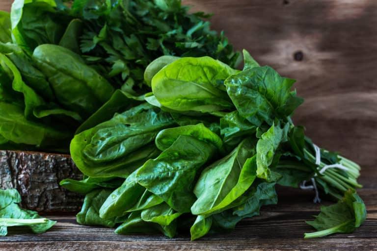 frischer grüner Spinat, Spinatblätter auf Holzuntergrund