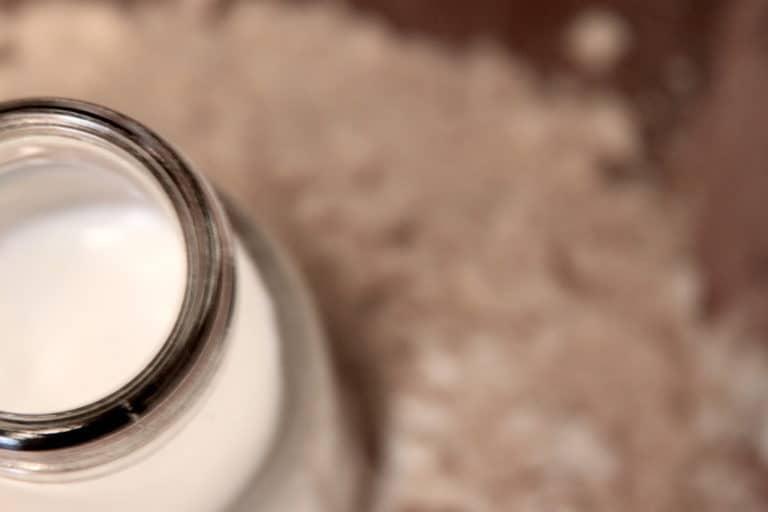 Vegan Proteins milch Vanillepulver Glas Milch Vordergrund