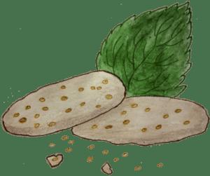 Brennnessel Kekse