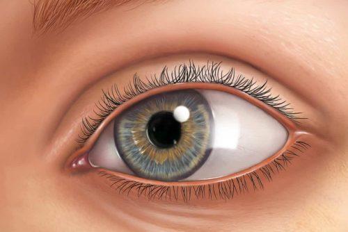 Blaues Auge gezeichnet mit Wimpern und Augenbrauen
