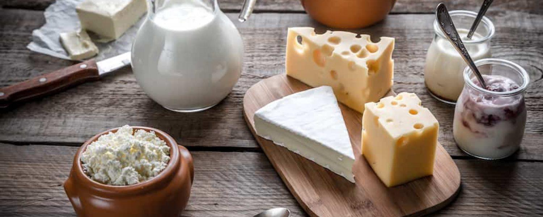 Calcium Milch Käse Milchprodukte Joghurt