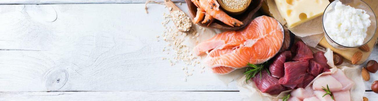 Makronährstoffe Lachs fleisch kaese eier shrimps bohnen nuesse