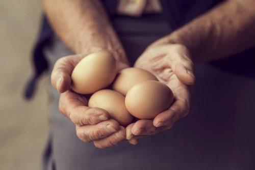 Vitamin B12 Lebensmittel Eier