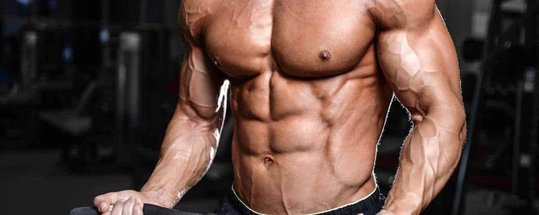 krafttraining biceps sixpack trainierter oberkoerper mann fintessstudio gym katawan
