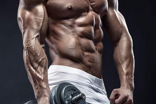 muskulös mann maschine bodybuilder delta muskeln hantel kraft kraftsport sport