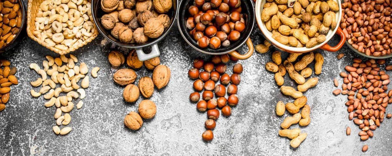 phosphor nuesse vegetarier veganer am tisch haselnuss walnuss katawan paranuss